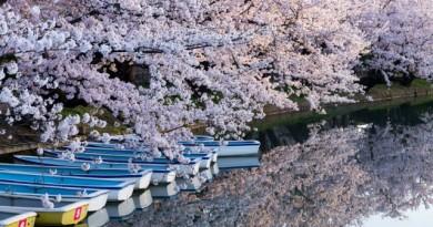 東京共助会 4月案内